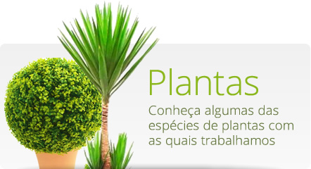 fischer_plantas